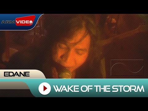 Wake of the Storm