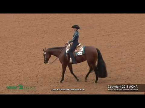 A Judges Perspective: 2016 Select Horsemanship World Champion