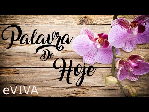 PALAVRA DE HOJE 26 DE MAIO 2020 eVIVA MENSAGEM MOTIVACIONAL PARA REFLEXÃO JEREMIAS 29 BOM DIA!