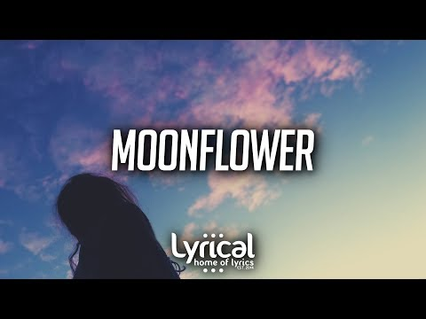 Bravo - Moonflower (Lyrics) - UCnQ9vhG-1cBieeqnyuZO-eQ