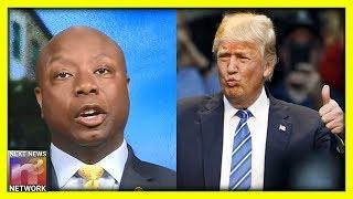 Black Senator Tim Scott SHUTS DOWN Anti-Trump Media Reporter With ONE HUGE List Of Good Reasons