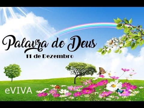 PALAVRA DE DEUS PARA HOJE 11 DE DEZEMBRO eVIVA MENSAGEM MOTIVACIONAL PARA REFLEXÃO DE VIDA