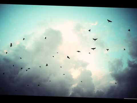Le ciel du lac ::