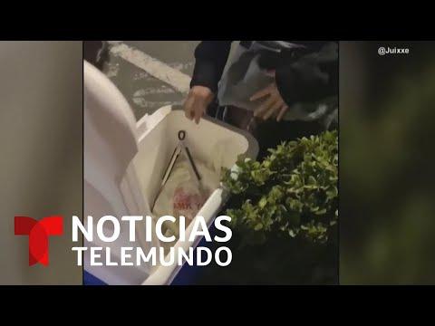 Una vendedora de tamales en California se queda de piedra ante este impactante regalo
