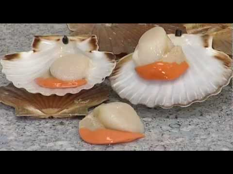 Scallops in the wild