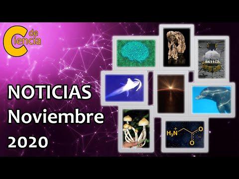 Noticias científicas noviembre 2020