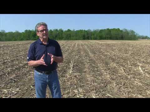 Corn School -  Drone Spraying - UC6c8yo1oqFSLvrusLSWShrw