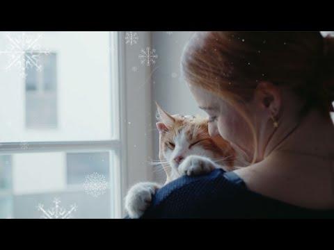 Fressnapf Weihnachtsspot - Was für ein Jahr