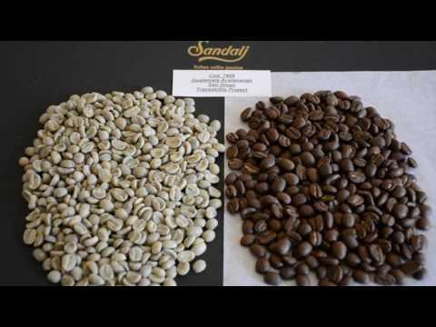 Caffè: Guatemala Acatenango San Diego - Sandalj Traceability Project