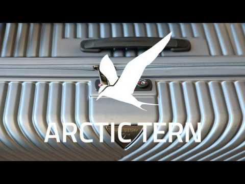 Arctic tern Trolley lock