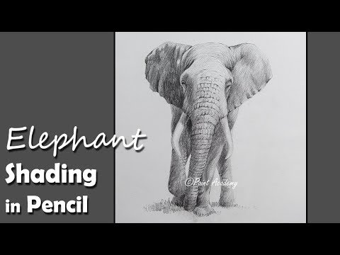 Pencil Drawing Techniques | How to Shade an Elephant in Pencil | step by step work