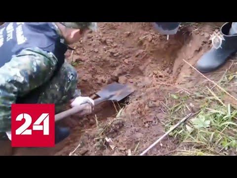 Под Дорогобужем найдены останки 70 человек, расстрелянных гитлеровцами