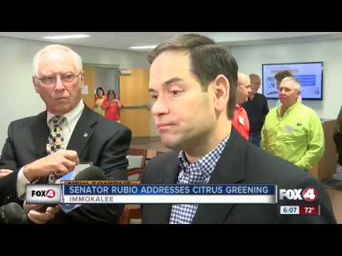 Rubio meets with Florida citrus growers hurt by citrus greening