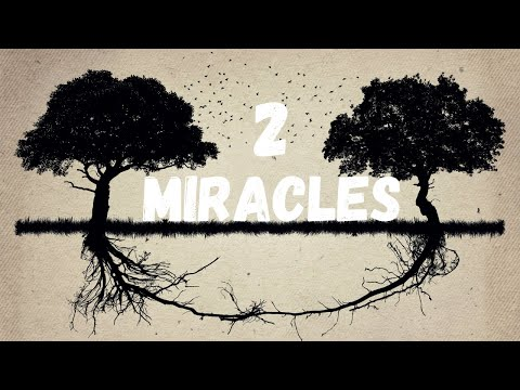 Two Miraculous Blessings That Will Produce (Day 11) - Ep. 40