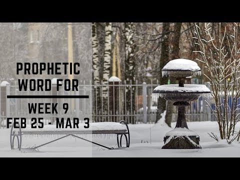 Prophetic Word for week 9