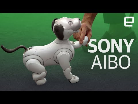 Sony's new Aibo robot first look - UC-6OW5aJYBFM33zXQlBKPNA
