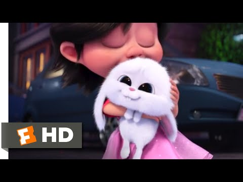 The Secret Life of Pets - Puppy (And Bunny) Love   Fandango Family - UCx554p1Bu_Mp1q0H_bEtZ1Q