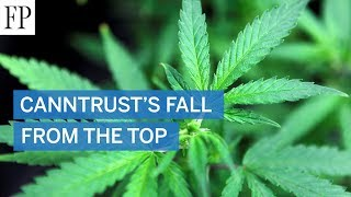 CannTrust's fall from the top