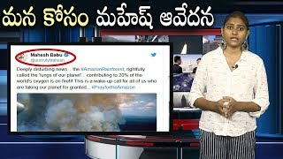 Mahesh babu Responds on Amazon Rainforest Fire | #MaheshBabuTweet | i5 Network