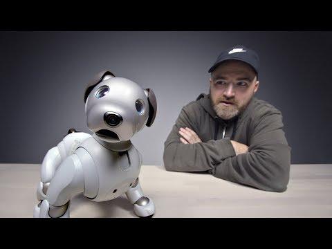 The $3000 Sony Aibo Robot Dog - UCsTcErHg8oDvUnTzoqsYeNw