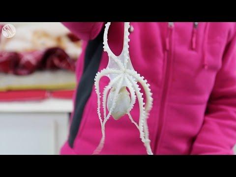 Eating LIVE Octopus, San-Nakji!! - UCIvA9ZGeoR6CH2e0DZtvxzw