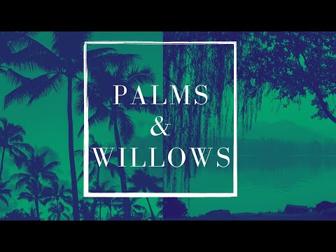 Church Online: Palm Sunday