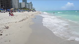 Florida's record-breaking tourism numbers comes with the potential for carbon emissions and dama...