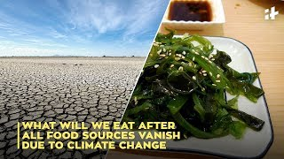 What Will We Eat After All Food Sources Vanish Due To Climate Change | Indiatimes