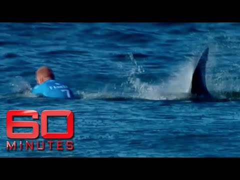 Mick Fanning opens up about shark attack   60 Minutes Australia - UC0L1suV8pVgO4pCAIBNGx5w