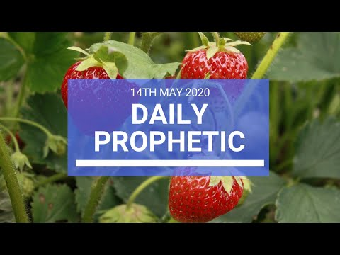 Daily Prophetic 14 May 2020 5 of 5