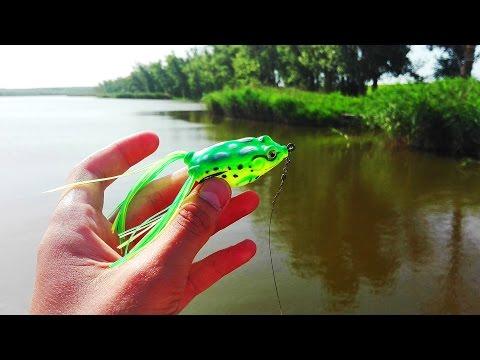 Что представляет собой искусственная лягушка?