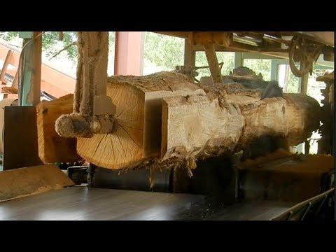 Extreme Fastest Automatic Wood Sawmill Machines Working   Wood Cutting Machine Modern Technology - UCTLrbUN8W0S4BDruToEtVQA