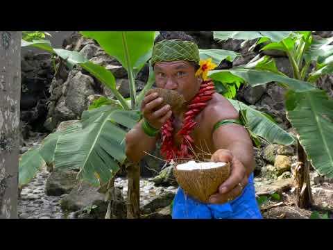 Banana Man Responds: Coconuts Refute Intelligent Design
