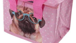 Yhon Soto Solutions - Novelty Gift Fun Pink Pug Design Lunch Box Cool Bag