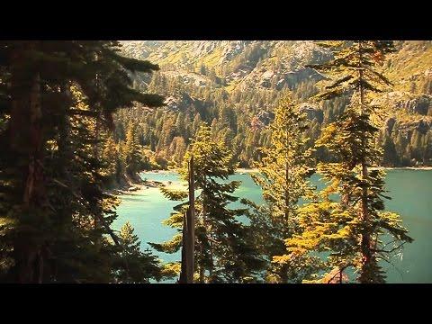 Etherwood - Sunlight Splinters (Official Video) - UCr8oc-LOaApCXWLjL7vdsgw