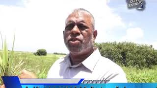 Reg.5 Rice Industry Is Likely To Suffer Major Losses- Rice Farmers. News for 22nd August, 2019