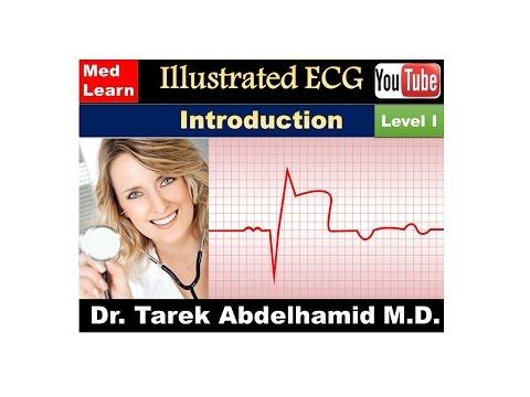 ECG INTRODUCTION