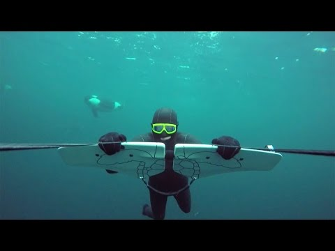 GoPro Awards: Soaring with Orcas - UCqhnX4jA0A5paNd1v-zEysw