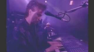 Strangelove (Live)1988 HQ