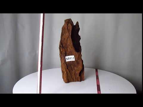 Коряга для аквариума натуральная мангровая до 45 см