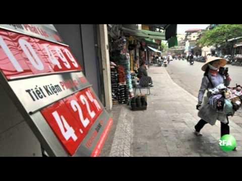 Bản tin video ngày 01-09-2010