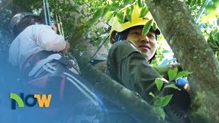 [NOW] Ep.56 - Tree Climbing/ Beat the Heat Inside the Cave / How to Stay Safe During a Flood