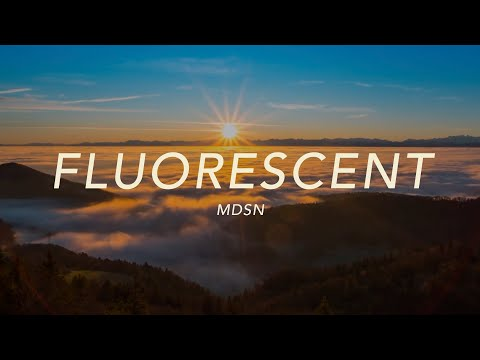Fluorescent - MDSN (Official Lyric Video)