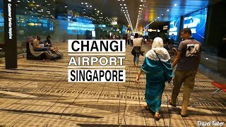 Travel Tuber || Changi Airport Singapore || Travelling to Singapore || Singapore Airways