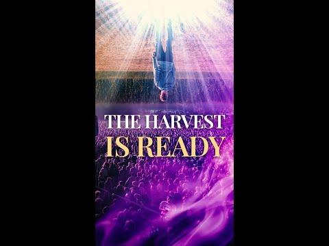 God is Sending YOU!