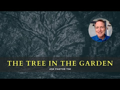 'Why did God put the tree in the Garden of Eden?' - Ask Pastor Tim