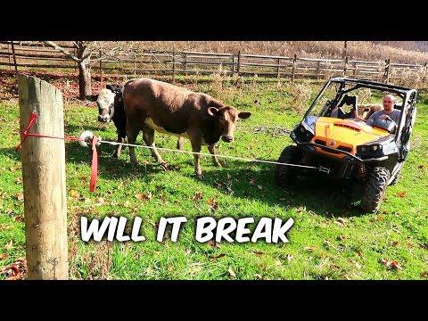 Break The Most Durable Cable Challenge - Anker - UCe_vXdMrHHseZ_esYUskSBw