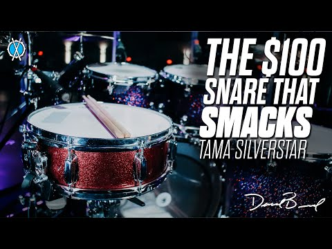 The $100 Snare That SMACKS!! // Tama Silverstar 5x14 Snare