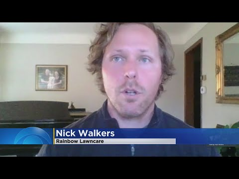 The Do's And Do-Not's Of Spring Lawncare With Nick Walkers