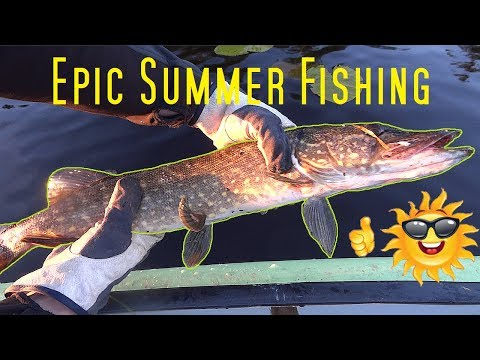 Epic Summer Fishing - NorthSurvival